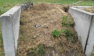 Zöldhulladék elszállítás Biatorbágy