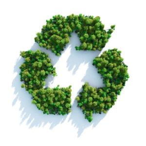 Környzetvédelem, zöldhulladék elszállítása profiktól