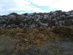 Zöldhulladék elszállítása Zugló